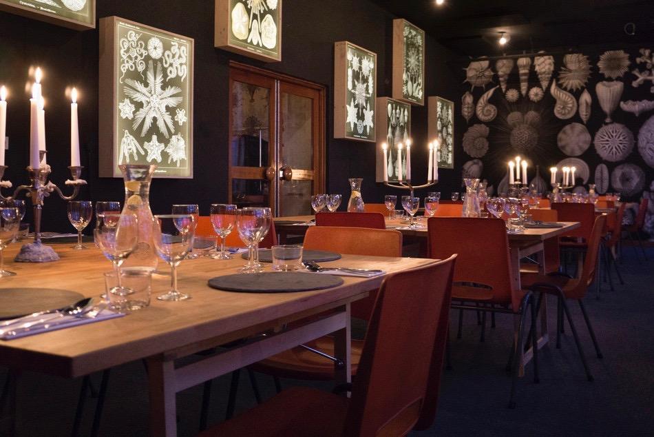 """foto1 (deze foto gebruiken voor pag. """"werk"""") Diningroom Haeckelkamer met de lichtobjecten"""